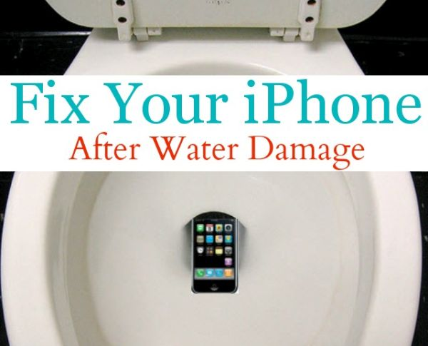 iPhone Fell in Toilet Water Damage Fix Guide Instruction