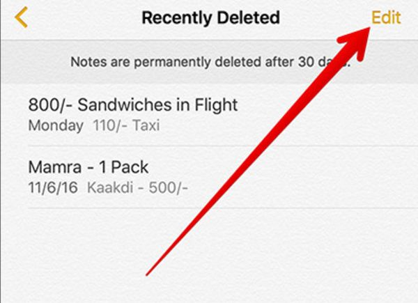 Recover Recently Deleted Notes iPhone